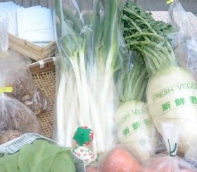 栃木の新鮮野菜